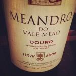 Meandro 2009
